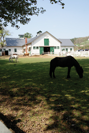 On Location At Hillside Farms Happenings Magazine