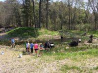 Environmental Quality @ Lackawnna College Environmental Education Center | Moscow | Pennsylvania | United States