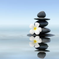 Learn to Meditate in Half a Day: The Basics of Meditation @ Kadampa Meditation Center