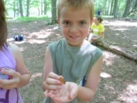 Eco Explorers Day Camp @ Lackawanna College Environmental Education Center | Moscow | Pennsylvania | United States