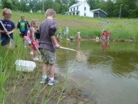 Backyard Habitats Day Camp @ Lackawanna College Environmental Education Center | Moscow | Pennsylvania | United States