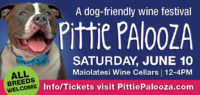 2nd Annual Pittie Palooza Festival @ Maiolatesi Wine Cellars | Scott | Pennsylvania | United States