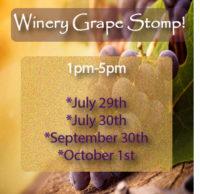 Grape Stomp @ Sorrenti's Cherry Valley Vineyards | Saylorsburg | Pennsylvania | United States